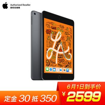 iPad mini 618